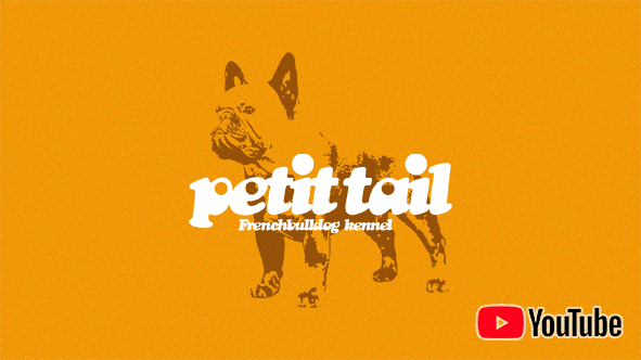 YouTube_Banner_petittail
